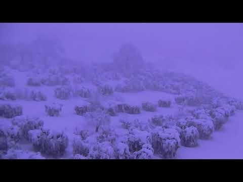 Nevicata Sant'Omero Gen2017 07