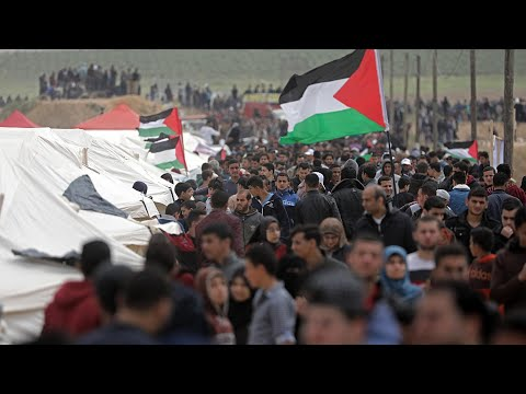 Palestinians killed by Israeli forces in Gaza protest