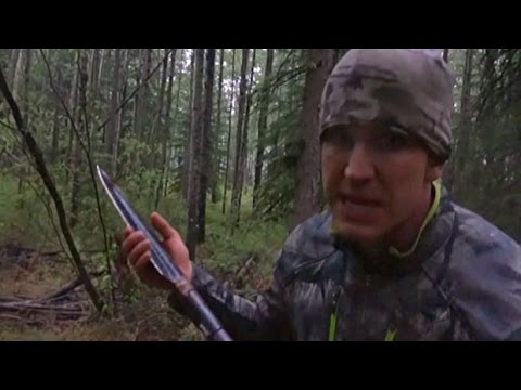 Spear Killing Of Bear Sparks Outrage