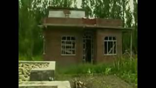 Burhan Wani Live Encounter from Kashmir valley