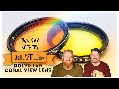 polyplab-coral-view-lens-review-with-side-by-side-comparisons