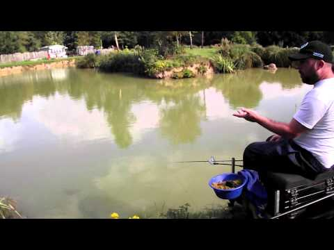 Method Feeder Fishing for F1's & Carp
