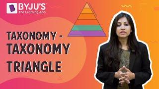 Taxonomy - Taxonomy Triangle