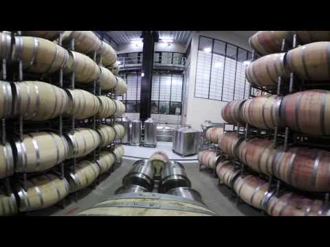 wine article ICE WINE PRODUCTION