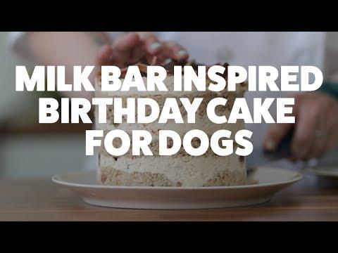 Milk Bar Inspired Birthday Cake for Dogs | Kiki's Canine Kitchen | Rover.com