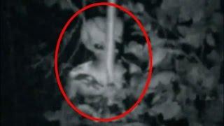 Kameralara Yakalanmış Gerçek Uzaylılar
