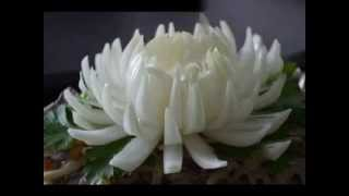 Хризантема из лука ( Chrysanthemum Bow )