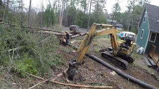 Cutting down trees and grading dirt