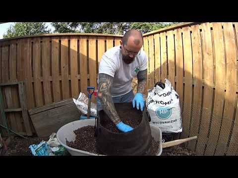 Making a nutrient rich organic soil...ie Super Soil @ Gillespiepharms