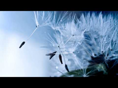 Ambient/Electroacoustic/Movie Mix (Therapist - A Study in Departure) mp3