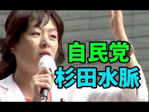 杉田水脈「日本維新の会に外交は任せられない!」【参院選2019】