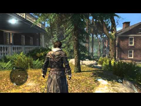 Assassin's Creed Rogue - Textures flickering and screen