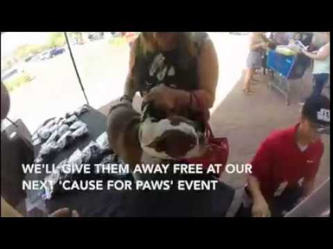 100.7 And Fulton Homes Presents Cause For Paws 2015