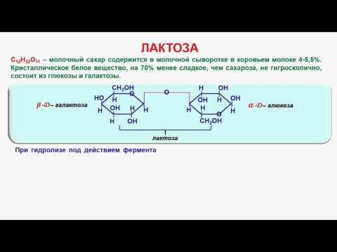 № 141. Органическая химия. Тема 21. Углеводы. Часть 15. Лактоза