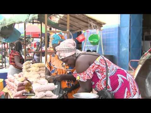 Guinea-Bissau cashew farmers lack protection