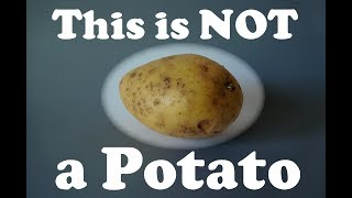 This Is NOT A Potato