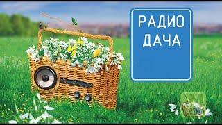 Радио Дача  Презентация