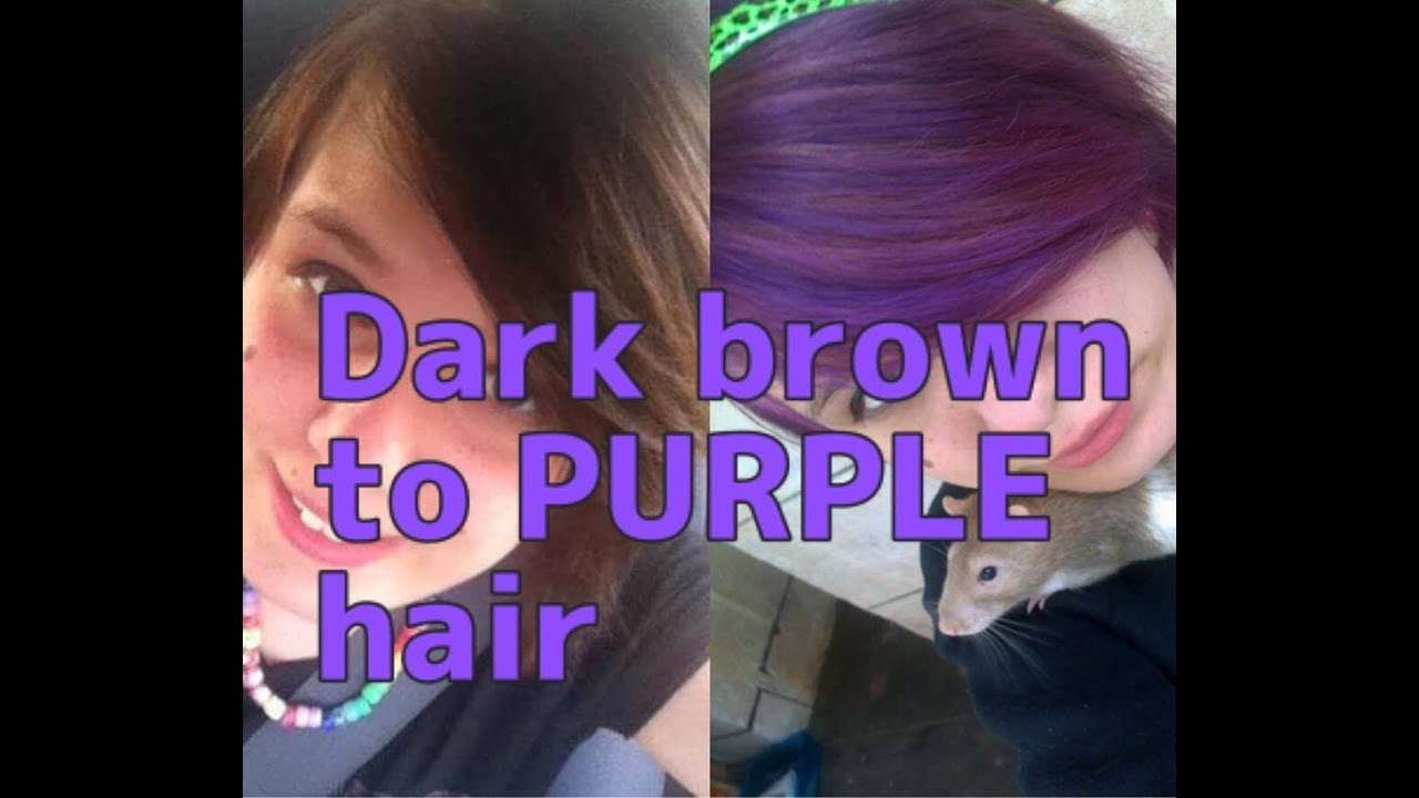 DARK BROWN TO PURPLE HAIR | WITHOUT BLEACH!! - YouTube