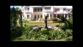 видео Дворец