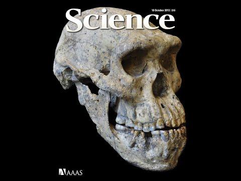 um-curso-de-história:-o-paleolítico-médio-#15