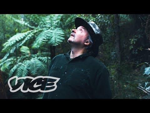 Hunting For Drugs In The Australian Bush