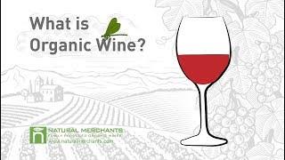 What is Organic Wine? - Natural Merchants Organic Wine