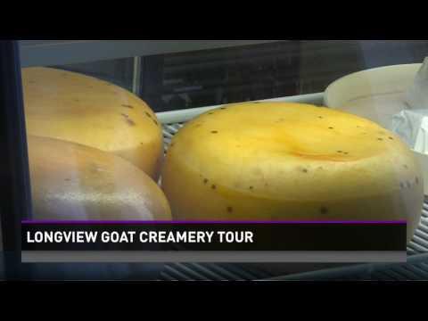 Longview Goat Creamery Tour