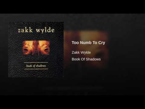 Too Numb To Cry Piano Chords Zakk Wylde Khmer Chords
