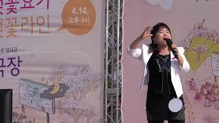 도당동 벚꽃축제2019 4 13