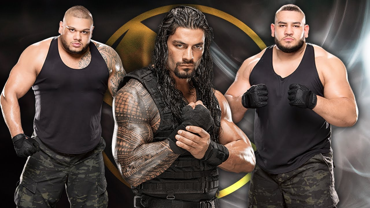 Image result for authors of pain roman reigns