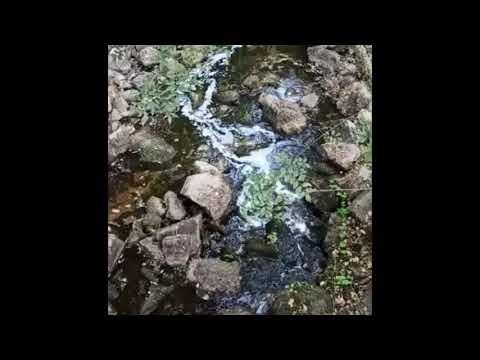 Denuncian un nuevo vertido en el río Barbaña