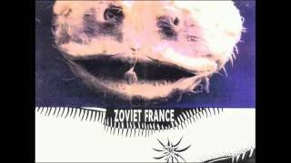Zoviet France - Voice Print Identification