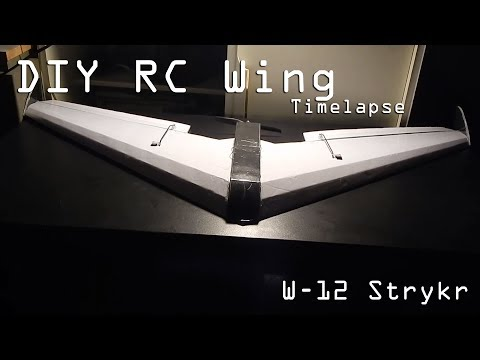 DIY RC Flying Wing | W-12 Strykr