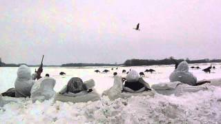 Tornado Alley Waterfowl