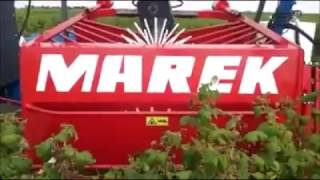 Branje malina (raspberry machine harvest)