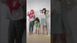 video tiktok lucu