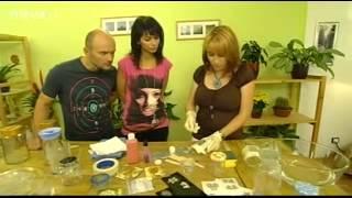 Rady ptáka Loskutáka - lept skla (TV Nova)