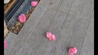 Женщина наконец-то узнала, кто был тайным поклонником и оставлял цветы у её дверей