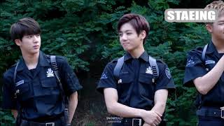 BTS Cute and Funny Moments with ANIMALS Compilation