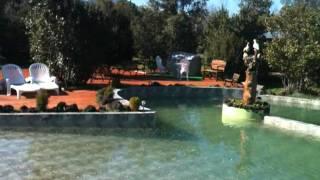 Natural Park Lodge- Piscina----Pucon,CHILE