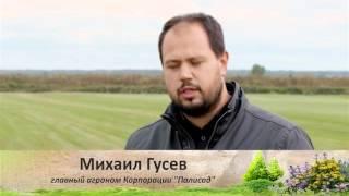 Выращивание рулонного газона. Советы и секреты. Выпуск 5(, 2015-11-20T14:08:51.000Z)