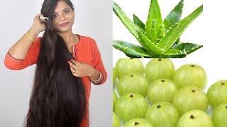 Amla Aloe Vera Hair Oil