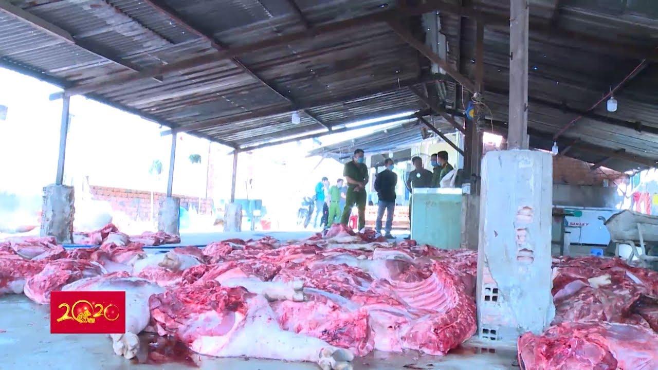 Bắt quả tang cơ sở giết mổ lợn nhiễm bệnh