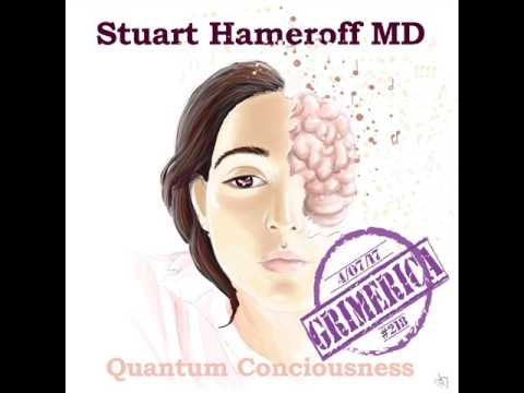 #218 - Grimerica Talks Quantum Consciousness, Microtubules & More with Stuart Hameroff