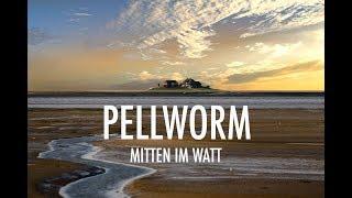 Pellworm. Bezaubernde Nordseeinsel