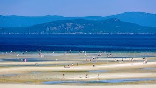 Gambar cover Top10 Recommended Hotels in Parksville, British Columbia, Canada