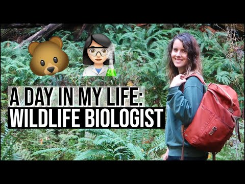 DAY IN THE LIFE OF A WILDLIFE BIOLOGIST // Habitat Assessments