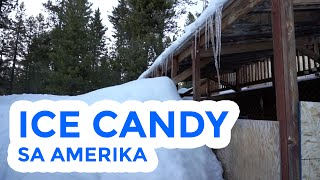 ICE CANDY SA AMERIKA - HEY JOE SHOW