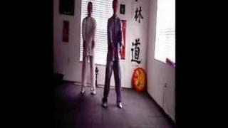Qi gong Shen Chien School