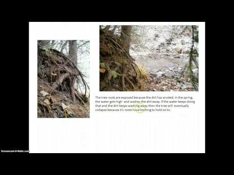 Photo Journal Escience 8 Examples